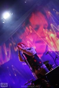Beatsteaks @ Taubertal 2012 - Foto: Arabell Walter